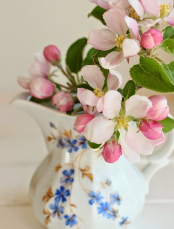 eine Portion Frühling