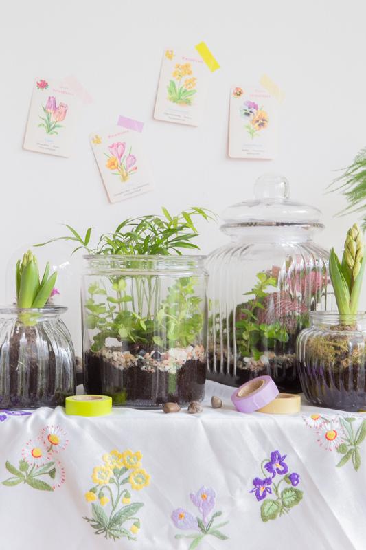 Terrarium - So holst Du Dir die Natur ins Haus