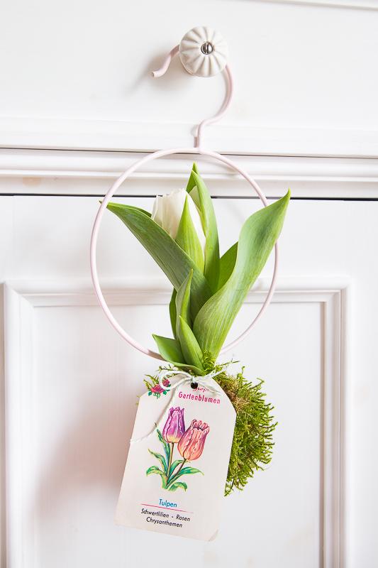 Na ist denn schon Frühling? - mit Blumenzwiebeln dekorieren
