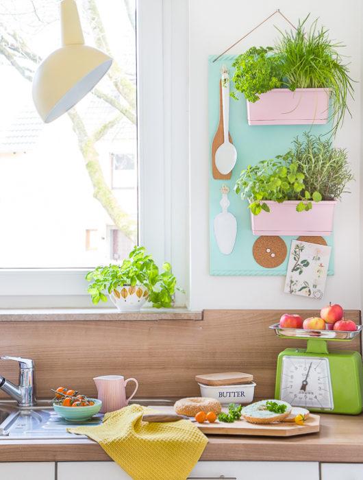 Ein trendiges Kräuterregal für die Küche zum Selberbauen