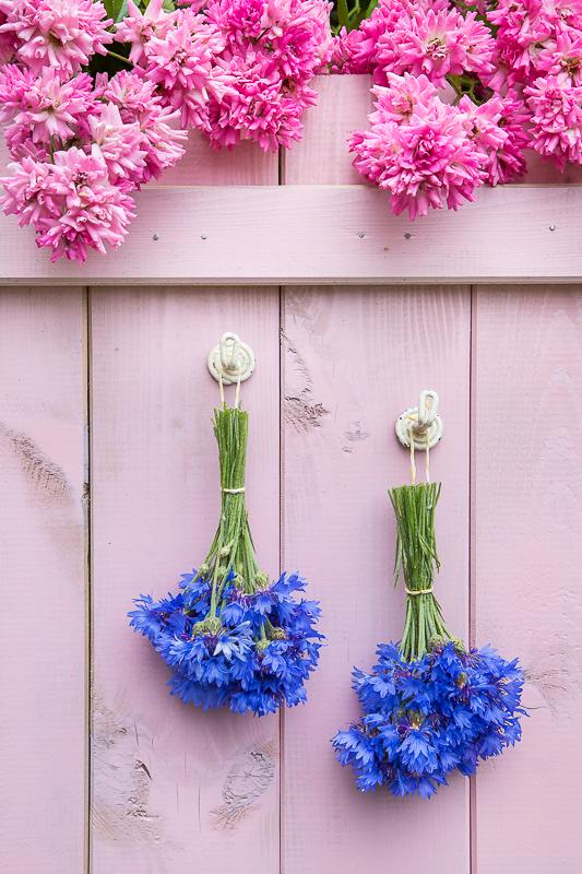Verzauber deine Gerichte - Geschenkideen mit Kornblumen